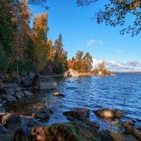 Осень в Монрепо :: Евгений Никифоров
