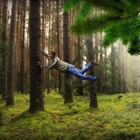 В лесу... :: Михаил Власов