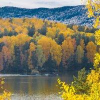 Золотая осень... :: игорь козельцев