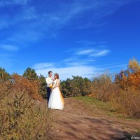 Осенняя свадьба :: Анастасия Тищенко