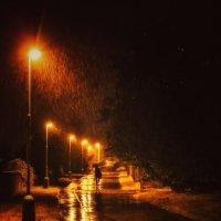 Осенние дожди. :: Svetlana Sneg