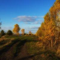 вдоль озера :: Геннадий Федоров
