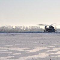 Рейнджеры снежных пустынь :: Александр Горбунов