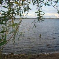 Рыбак на Волге :: марина ковшова