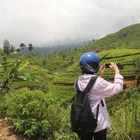 Sri-Lanka :: Андрей