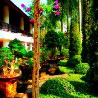 райский сад :: Таня