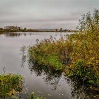 Осень и ещё раз осень :: Андрей Дворников