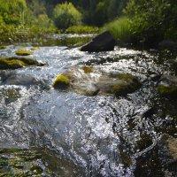 перейти реку... однажды :: Сергей Шаврин