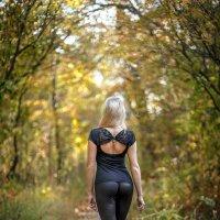 Осень и ... :: Максим Леонтьев