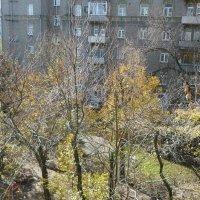 """""""Падают, падают, падают листья, ну и пусть, зато прозрачен свет.."""" :: Татьяна Юрасова"""