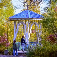 Прогулка по парку :: Лариса Димитрова
