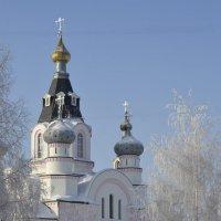 Снежное утро. :: Александр Бормотов