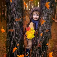 К нам идет Осень :: Нина