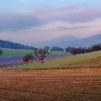краски утра :: Elena Wymann