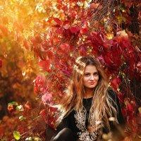 девушка в лесу :: Елена Колодяжная