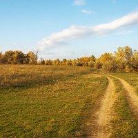 Осень в пути :: Сергей Пучков