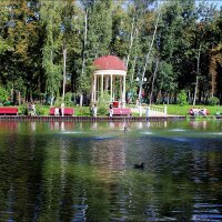Отдых в парке :: Татьяна Пальчикова