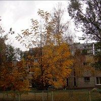 Осень в детском саду :: Нина Корешкова