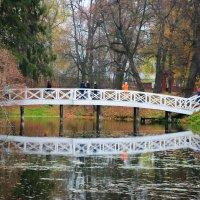 Горбатый мостик Большое Болдино :: Ольга НН
