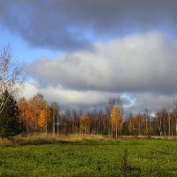 Краски осени. :: Андрей Вычегодский
