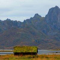 домик с живой крышей. :: Ирэна Мазакина