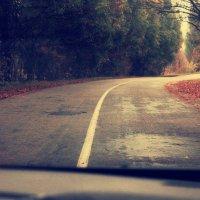 дорога по лесу :: сергей мыряха