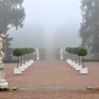 Екатерининский парк ранее утро. :: Харис Шахмаметьев