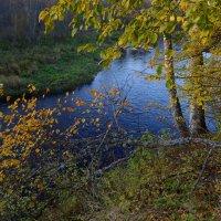 Осень :: Наталья Левина