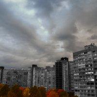 Серые муравейники :: Олег Лопухов