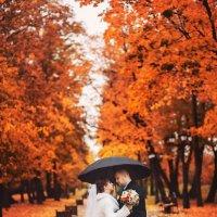 Огненная свадьба :: Константин Король