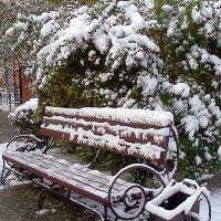 Первый снег :: Наталья ***