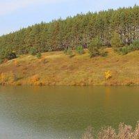 Осень на озере. :: Борис Митрохин
