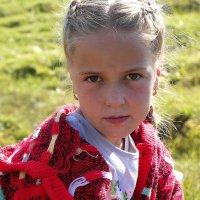 Взгляд :: Елена Фалилеева-Диомидова