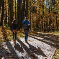 И снова осень тени разбросала :: Ирина Данилова