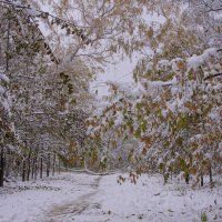 Первый снег---06 :: Владимир Холодный
