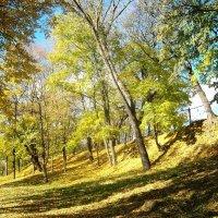 Осень :: Андрей Буховецкий