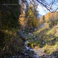 Течёт ручей,бежит ручей... :: Anna Gornostayeva