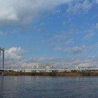Виноградовский мост :: Андрей