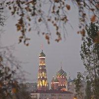Храмы  Тамбова. :: Виталий Селиванов