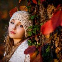 Осенняя грусть :: Надежда Городецкая