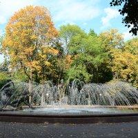 В парке. :: Paparazzi