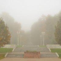 Осенний парк в утреннем тумане :: Сергей Тагиров