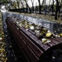 Осенний дождь :: Сергей Елесин