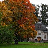 Осенний променад :: Виктор Никитенко