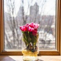 Весна :: Эмма