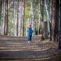 В лесу :: Максим Никитеев