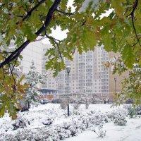 Первый снег :: Татьяна Ким