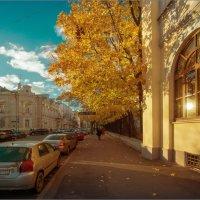 Московская осень #8 :: Владимир Елкин