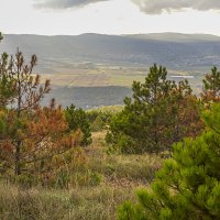Осенний пейзаж :: Елена Васильева