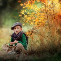 осень. :: Света Солнцева